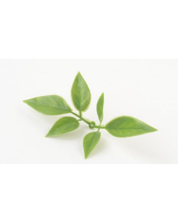 КАРРО Лист розы мини зеленый комбинированный (100 шт.)