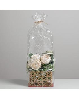 Пакет с жёстким дном «Ботаника», 11 х 17 х 60 см 4982397
